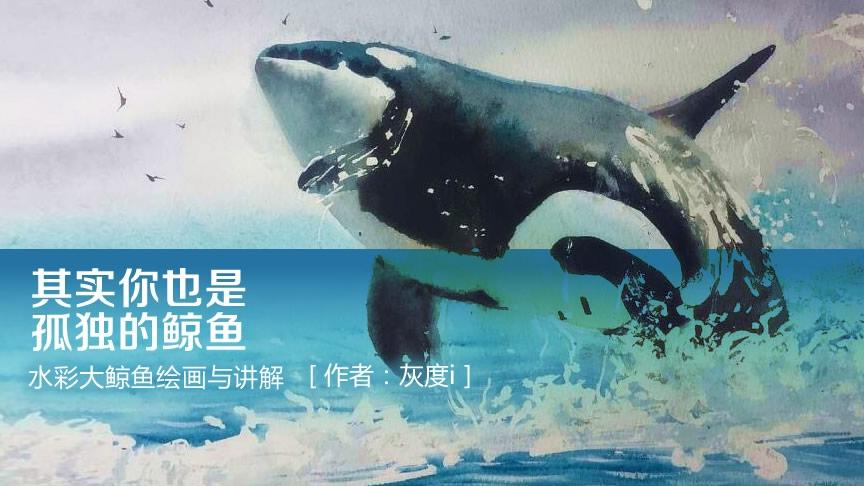 其实你也是孤独的鲸鱼