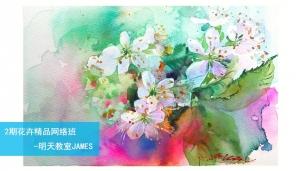 2期花卉精品0918