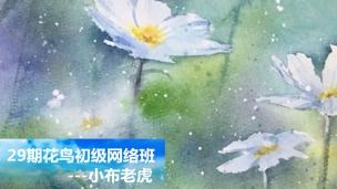 29期花鸟初级网络班S-0105