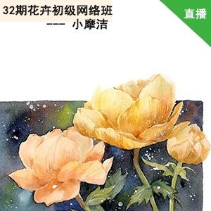 33期花卉插画网络课