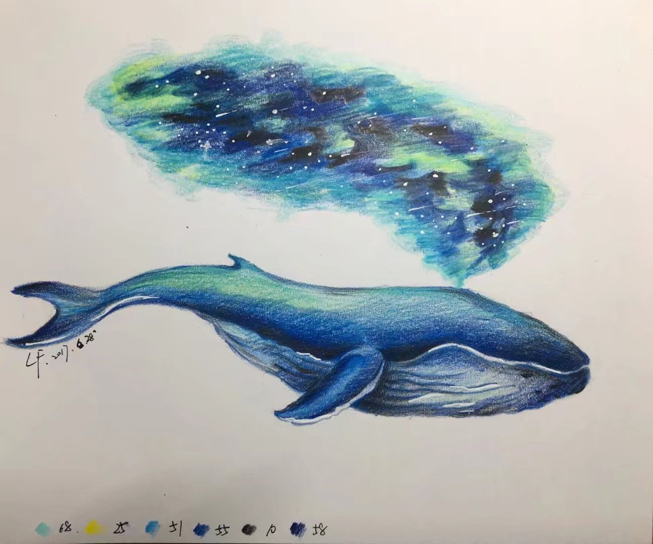 彩铅——鲸鱼图片